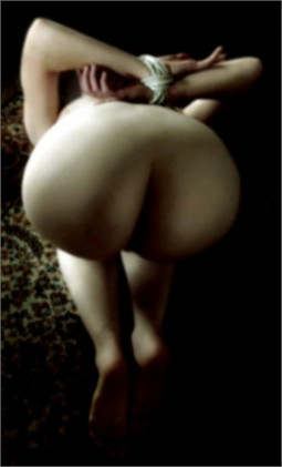 rear view of nude woman, ass in the air with her wrists bound behind her back by Garm