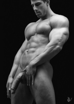 torso shot of muscled hot man holding his turgid cock