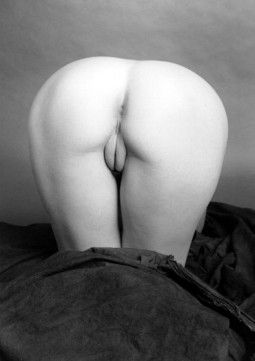 Dita Von Teese ass up displaying a rear view of her shaved pussy and anal star