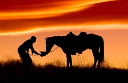 A cowboy offering his horse a drink of water from his cowboy hat